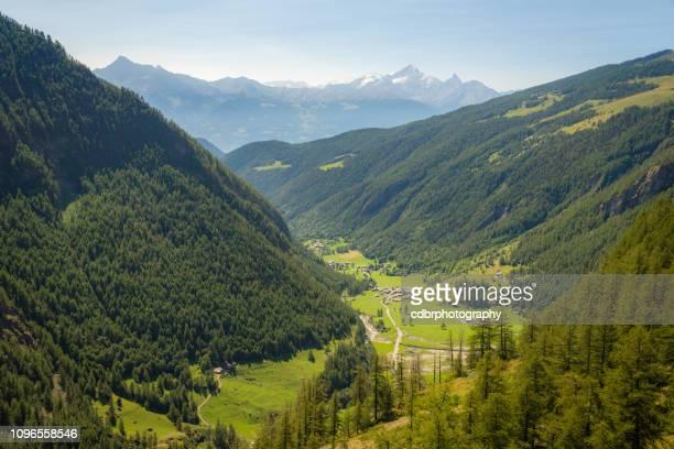 summer italian alps scenery - valle foto e immagini stock