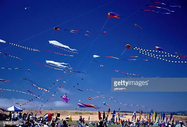 Summer Kite Festival