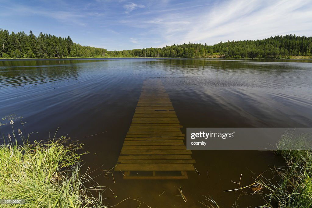 Summer lake : Stock Photo