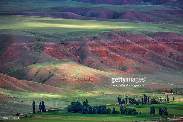 summer landscape in tian shan mountains, xinjiang china - tien shan mountains stock pictures, royalty-free photos & images