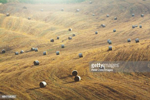 Summer landscape in Tuscany with haybales