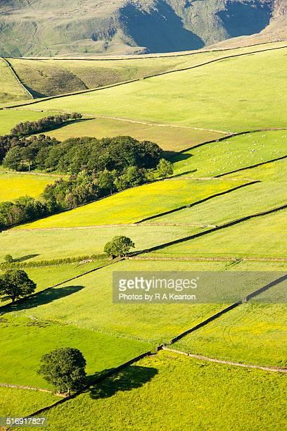 Summer landscape near Hayfield, Derbyshire