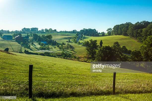 Summer Landscape of a Rolling Hillside