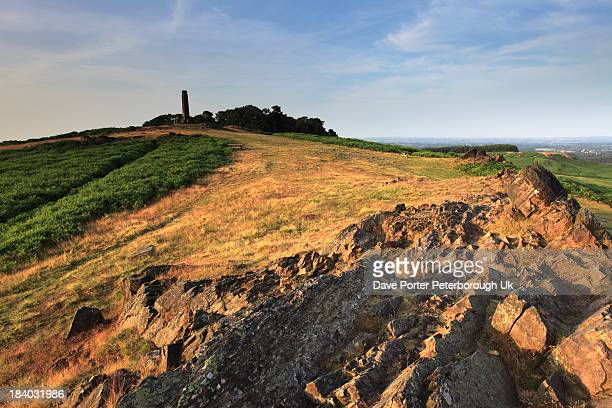 summer landscape over bradgate park - leicestershire stock pictures, royalty-free photos & images