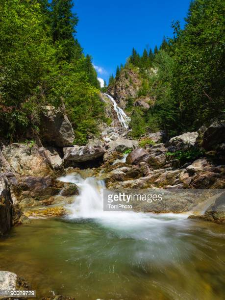 summer landscape with large glacier waterfall among rocks in fir forest in high carpathian mountains - transylvania stock pictures, royalty-free photos & images