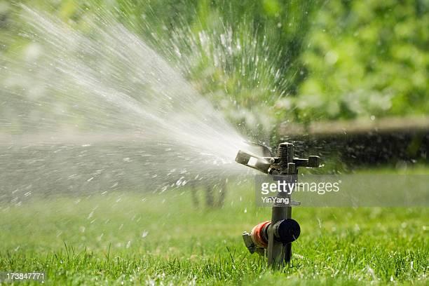 Pelouse d'été eau d'arrosage de pelouse d'herbe verte pour l'Irrigation