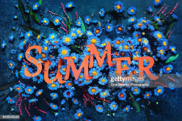 Summer lettering with blue flowers and petals