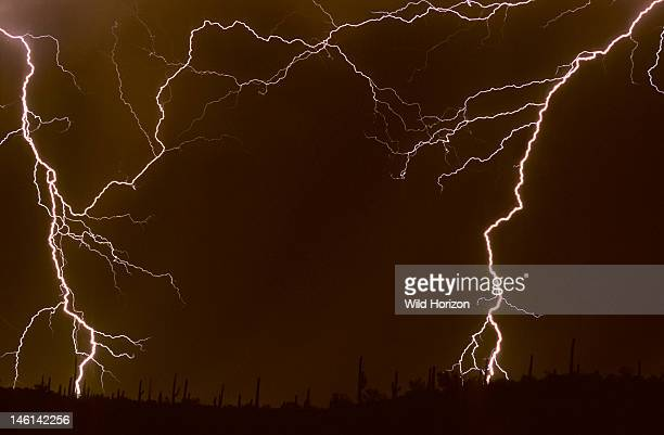 Summer monsoon storm in the Sonoran Desert with branched cloudtoground lightning discharges Tucson Arizona USA