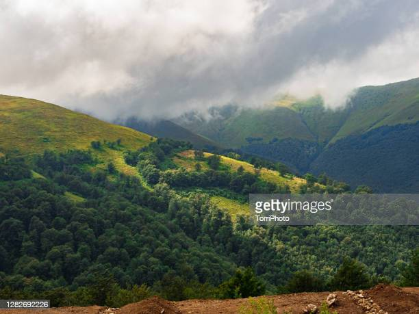 summer mountains landscape with green forests cloudy sky and sunshine - ucrania fotografías e imágenes de stock