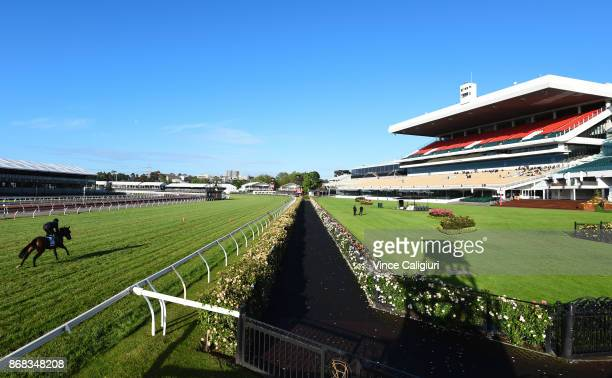 Summer Passage during a trackwork session at Flemington Racecourse on October 31 2017 in Melbourne Australia