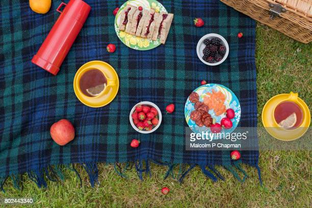 summer picnic spread on blanket with jam sandwiches, fruit and tea - hamper stock pictures, royalty-free photos & images