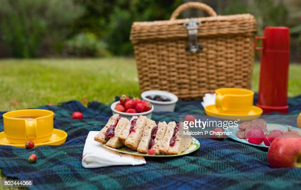 summer picnic spread on blanket with jam sandwiches, fruit and tea - pique nique photos et images de collection