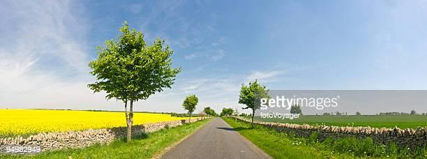 Summer road blue skies