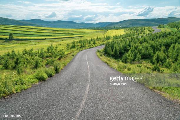 summer road extends into the distance - distant stock pictures, royalty-free photos & images