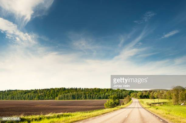 summer road in sweden - non urban scene stock pictures, royalty-free photos & images
