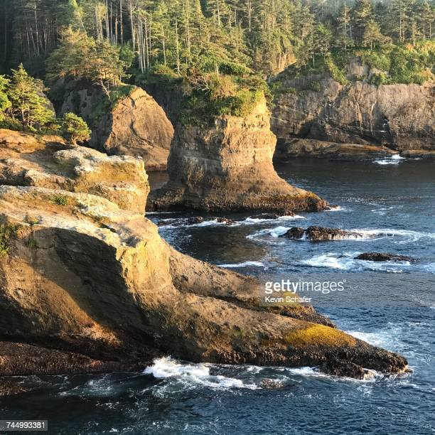 summer road trip - cape flattery stock photos and pictures