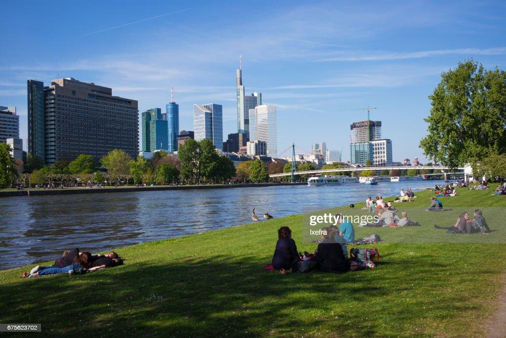 Summer Scene Along The Main River In Frankfurt Stock Photo Getty - Frankfurt river