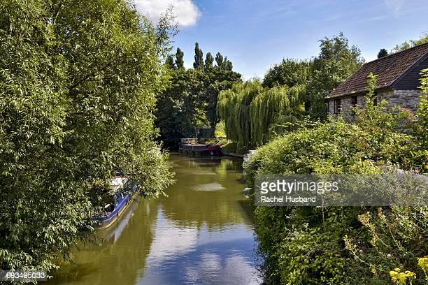 Summer scene of the River Avon at Keynsham