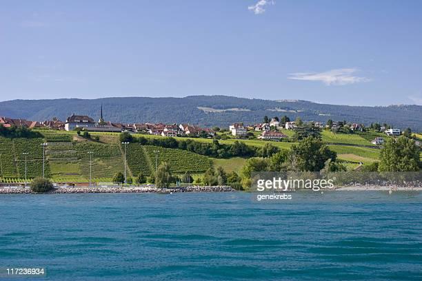湖の夏の風景にヌーシャテル、ブドウ園とビーチ - ヌーシャテル ストックフォトと画像