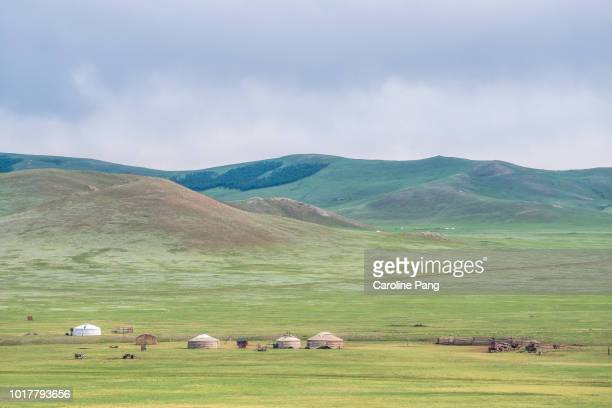 Summer settlement of the Mongolian nomads.