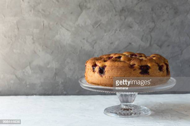 summer sponge cake with cherries - sponge cake stock pictures, royalty-free photos & images