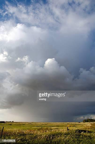 Sommer-Storm