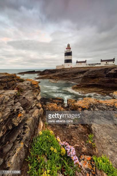 summer sunrise at hook lighthouse, ireland - coastline stock pictures, royalty-free photos & images