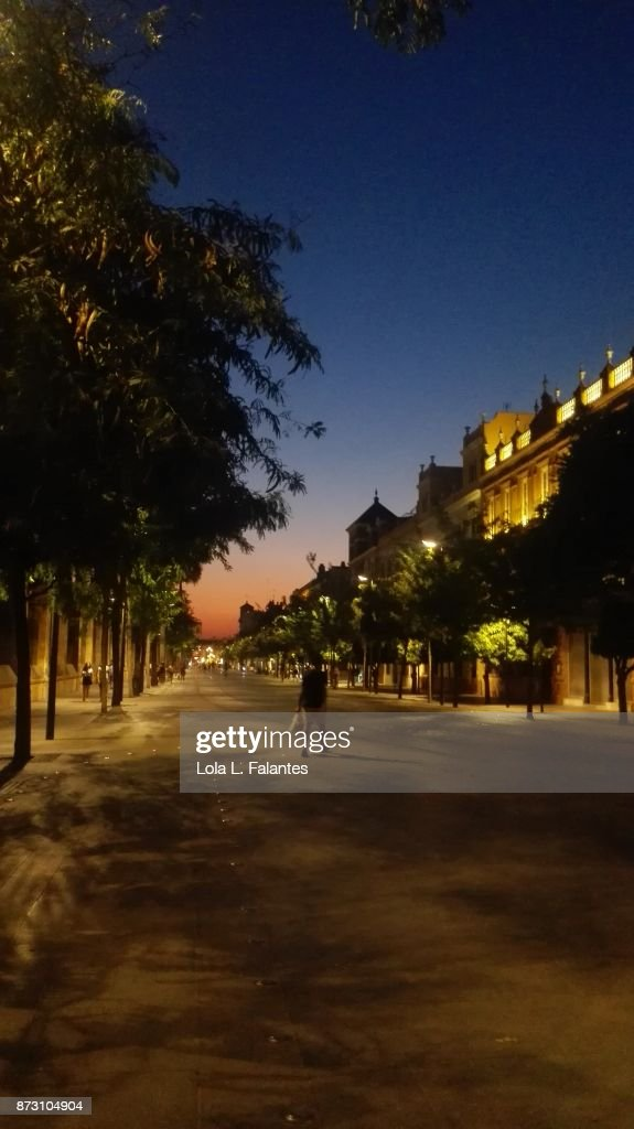 Summer sunset in Seville. Cityscape : Foto de stock