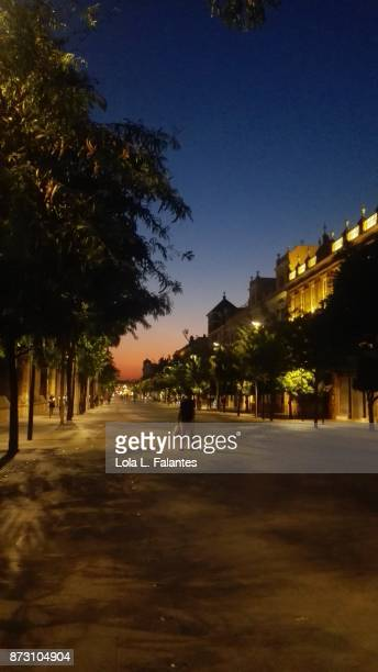 Summer sunset in Seville. Cityscape