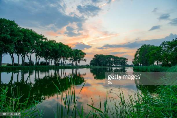 "summer sunset in the ijsseldelta region near kampen in the netherlands. - ""sjoerd van der wal"" or ""sjo"" stock pictures, royalty-free photos & images"