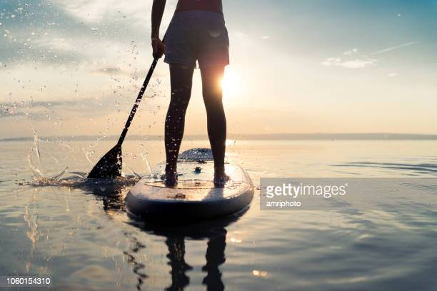 summer sunset lake paddleboarding detail - paddleboard stock photos and pictures