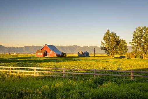 Summer sunset with a red barn in rural Montana and Rocky Mountains 863542630
