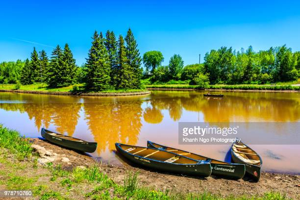 summer time in centennial park, moncton, new brunswick, canada - khanh ngo stock pictures, royalty-free photos & images