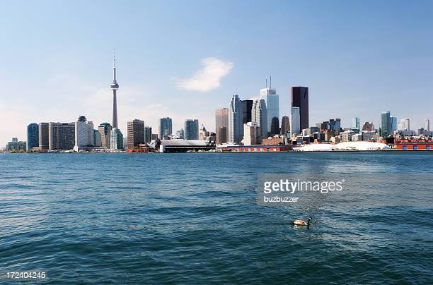 summer time in toronto city - national landmark stock pictures, royalty-free photos & images