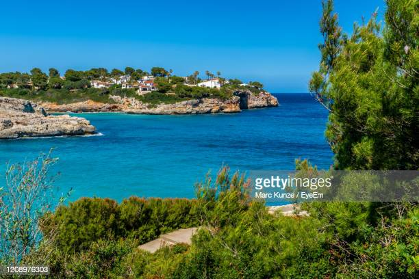 summer time mallorca - manacor stock pictures, royalty-free photos & images