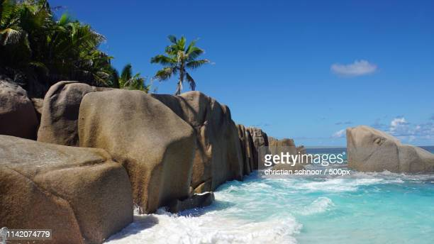 summer time - montego bay stock pictures, royalty-free photos & images