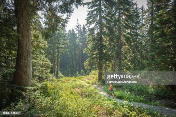 summer trail running, mount seymour, north vancouver, british columbia, canada - cross country running stock pictures, royalty-free photos & images