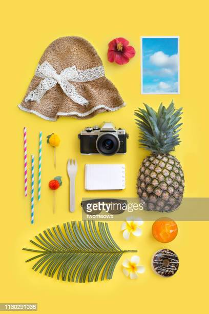 summer vacation objects. - knolling concept stock pictures, royalty-free photos & images