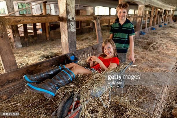 Sommer Urlaub auf der farm