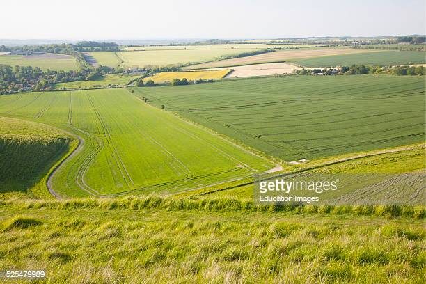 Summer view of arable fields and chalk landscape from Cherhill Down escarpment Wiltshire England