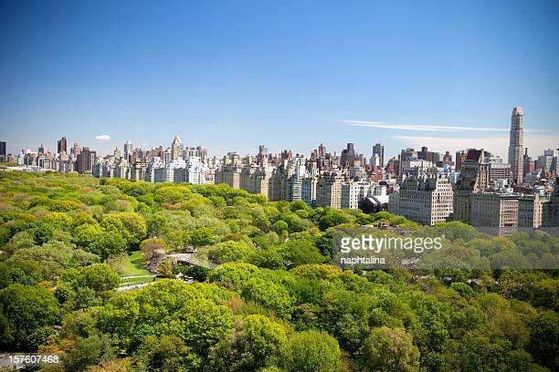 Summer view of Central Park