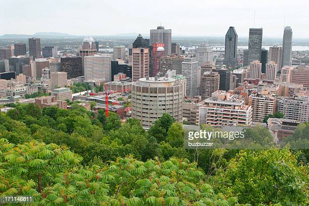 Summer view of Montreal City