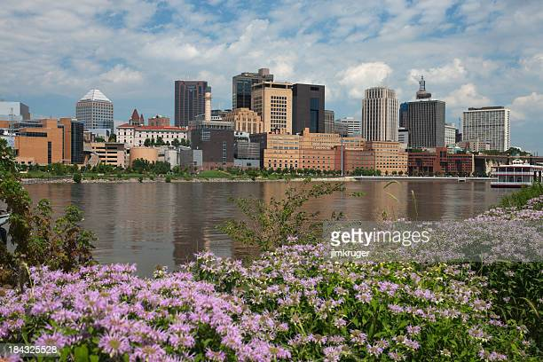 summer view of st. paul, minnesota. - mississippi river stock pictures, royalty-free photos & images