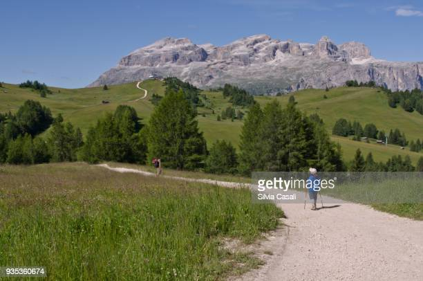 Summer walk on the Dolomites