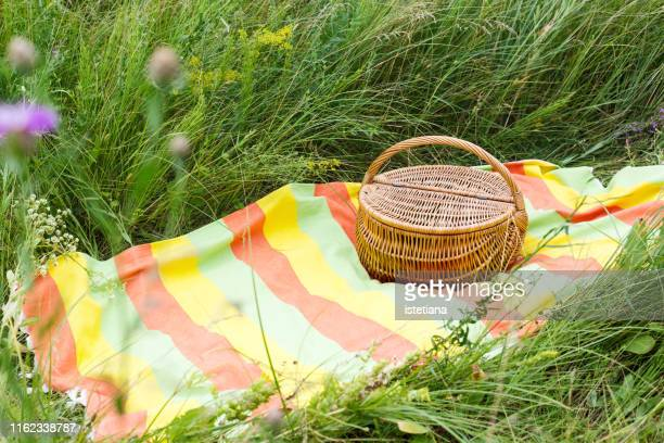 summer weekend picnic, picnic basket on striped colorful picnic blanket - picnic blanket stock pictures, royalty-free photos & images