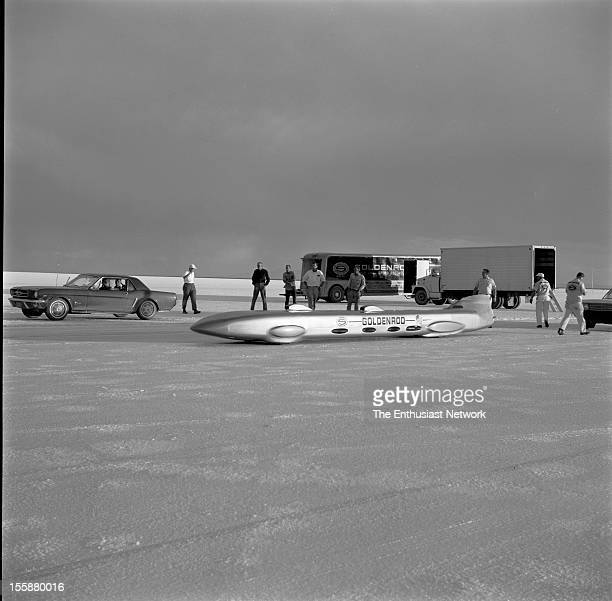 Summers Brothers Goldenrod at Bonneville