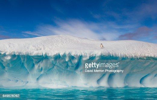 Summertime in Antarctica