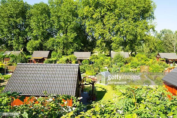 Summertime shot of allotments in Mülheim Saarn