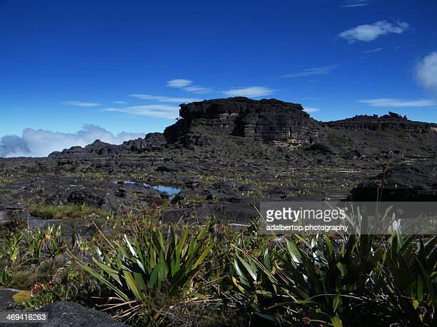 Summit of Mount Roraima. Maverick Rock