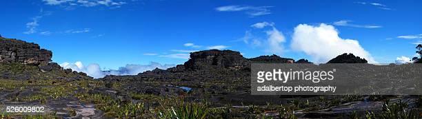 Summit of Mount Roraima / Roraima Tepui